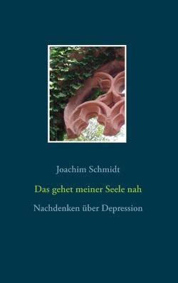 Das gehet meiner Seele nah von Schmidt,  Joachim