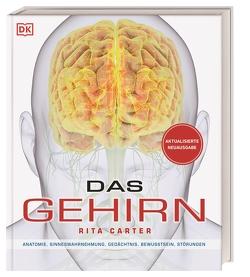 Das Gehirn von Carter,  Rita