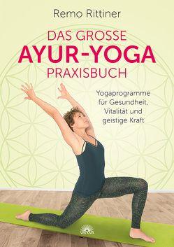 Das große Ayur-Yoga-Praxisbuch von Rittiner,  Remo