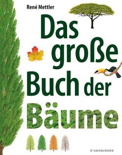 Das große Buch der Bäume von Mettler,  René, Panzacchi,  Cornelia