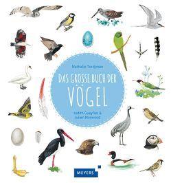 Das große Buch der Vögel von Gueyfier,  Judith, Norwood,  Julien, Panzacchi,  Cornelia, Tjordman,  Nathalie