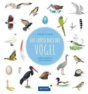 Das große Buch der Vögel von Gueyfier,  Judith, Norwood,  Julien, Panzacchi,  Cornelia, Tordjman,  Nathalie