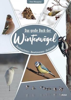 Das große Buch der Wintervögel von Westphal,  Uwe
