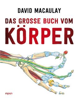 Das große Buch vom Körper von Hensel,  Wolfgang, Macaulay,  David, Walker,  Richard