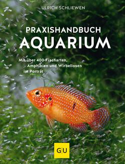 Das große GU Praxishandbuch Aquarium von Schliewen,  Ulrich