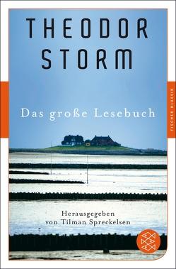 Das große Lesebuch von Spreckelsen,  Tilman, Storm,  Theodor