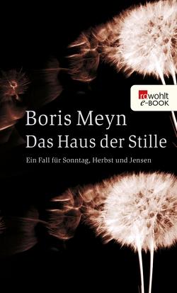 Das Haus der Stille von Meyn,  Boris