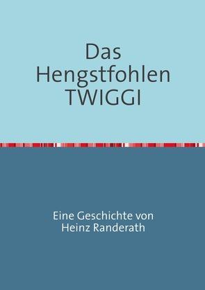 Das Hengstfohlen TWIGGI von Randerath,  Heinz