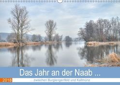Das Jahr an der Naab zwischen Burglengenfeld und Kallmünz (Wandkalender 2018 DIN A3 quer) von Rinner,  Rudolf