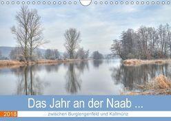 Das Jahr an der Naab zwischen Burglengenfeld und Kallmünz (Wandkalender 2018 DIN A4 quer) von Rinner,  Rudolf