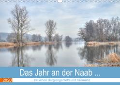 Das Jahr an der Naab zwischen Burglengenfeld und Kallmünz (Wandkalender 2020 DIN A3 quer) von Rinner,  Rudolf