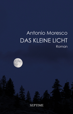 Das kleine Licht von Moresco,  Antonio, Schneider,  Sabine