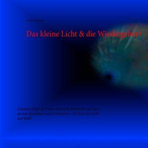 Das kleine Licht & die Wiedergeburt der Seele von Brandt,  Andreas