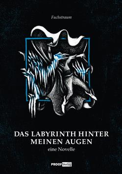 Das Labyrinth hinter meinen Augen von Große,  Christoph