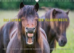 Das Lachen der Islandhengste. (Wandkalender 2020 DIN A3 quer) von Gerlach,  Ingo