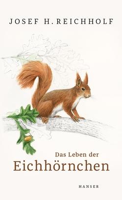 Das Leben der Eichhörnchen von Brandstetter,  Johann, Reichholf,  Josef H.