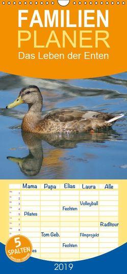 Das Leben der Enten – Familienplaner hoch (Wandkalender 2019 , 21 cm x 45 cm, hoch) von kattobello