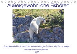 """Das Leben der etwas """"anderen"""" Eisbären! (Tischkalender 2019 DIN A5 quer) von Bengtsson / Perlenfänger Naturtouren & Artenschutz,  Sabine"""