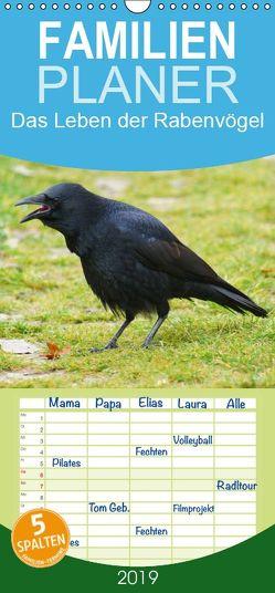 Das Leben der Rabenvögel – Familienplaner hoch (Wandkalender 2019 , 21 cm x 45 cm, hoch) von kattobello