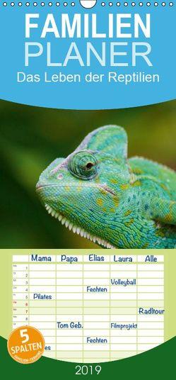 Das Leben der Reptilien – Familienplaner hoch (Wandkalender 2019 , 21 cm x 45 cm, hoch) von kattobello