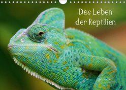 Das Leben der Reptilien (Wandkalender 2018 DIN A4 quer) von Kattobello,  k.A.