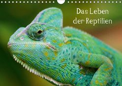 Das Leben der Reptilien (Wandkalender 2019 DIN A4 quer) von kattobello
