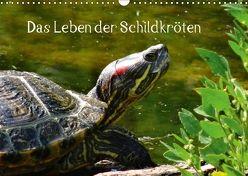 Das Leben der Schildkröten (Wandkalender 2018 DIN A3 quer) von Kattobello,  k.A.
