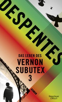 Das Leben des Vernon Subutex 3 von Despentes,  Virginie, Steinitz,  Claudia