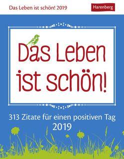 Das Leben ist schön! – Kalender 2019 von Artel,  Ann Christin, Harenberg