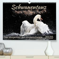Das Morgenbad des Höckerschwans (Premium, hochwertiger DIN A2 Wandkalender 2020, Kunstdruck in Hochglanz) von Banker,  Sylvio