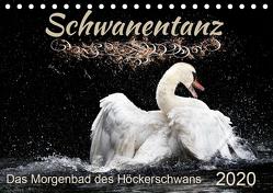 Das Morgenbad des Höckerschwans (Tischkalender 2020 DIN A5 quer) von Banker,  Sylvio