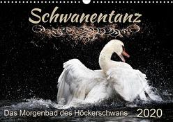 Das Morgenbad des Höckerschwans (Wandkalender 2020 DIN A3 quer) von Banker,  Sylvio