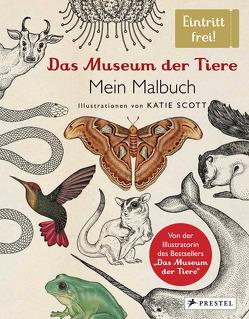 Das Museum der Tiere. Mein Malbuch von Knüppel,  Katharina, Scott,  Katie