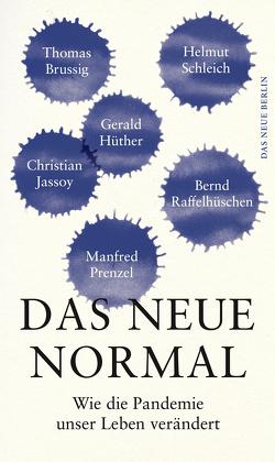 Das neue Normal von Ende,  Ulrich
