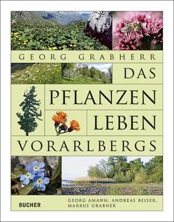 Das Pflanzenleben Vorarlbergs von Amann,  Georg, Beiser,  Andreas, Grabher,  Markus, Grabherr,  Georg