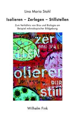 Das Problem des Absoluten in der Philosophie Hegels von Aragüés,  Rafael