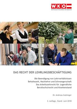 Das Recht der Lehrlingsbeschäftigung von Gattinger,  Andreas
