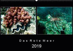Das Rote Meer – 2019 (Wandkalender 2019 DIN A2 quer) von Hamburg, Mirko Weigt,  ©