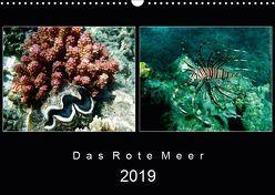 Das Rote Meer – 2019 (Wandkalender 2019 DIN A3 quer) von Hamburg, Mirko Weigt,  ©