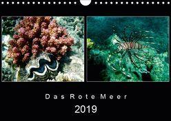 Das Rote Meer – 2019 (Wandkalender 2019 DIN A4 quer) von Hamburg, Mirko Weigt,  ©
