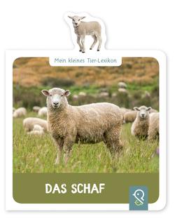 Das Schaf von Kastenhuber,  Hannah