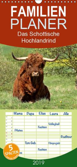 Das Schottische Hochlandrind – Familienplaner hoch (Wandkalender 2019 , 21 cm x 45 cm, hoch) von Schmutzler-Schaub,  Christine