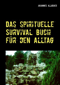 Das spirituelle Survival Buch für den Alltag von Allgäuer,  Johannes