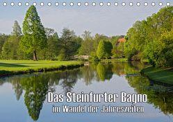 Das Steinfurter Bagno im Wandel der Jahreszeiten (Tischkalender 2019 DIN A5 quer)