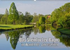 Das Steinfurter Bagno im Wandel der Jahreszeiten (Wandkalender 2019 DIN A2 quer)