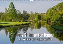 Das Steinfurter Bagno im Wandel der Jahreszeiten (Wandkalender 2019 DIN A3 quer)