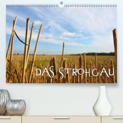 Das Strohgäu (Premium, hochwertiger DIN A2 Wandkalender 2020, Kunstdruck in Hochglanz) von Mathias,  Simone