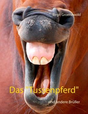 """Das """"Tussenpferd"""" von Groenewold,  Birgit"""