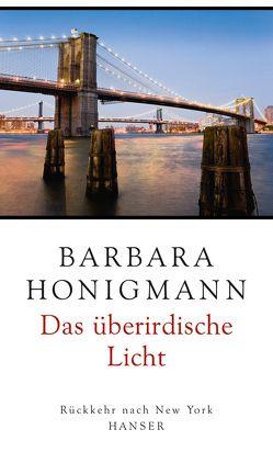 Das überirdische Licht von Honigmann,  Barbara