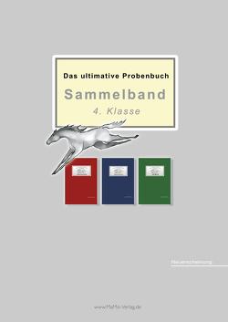 Das ultimative Probenbuch Sammelband 4. Klasse von Mandl,  Mandana, Reichel,  Miriam